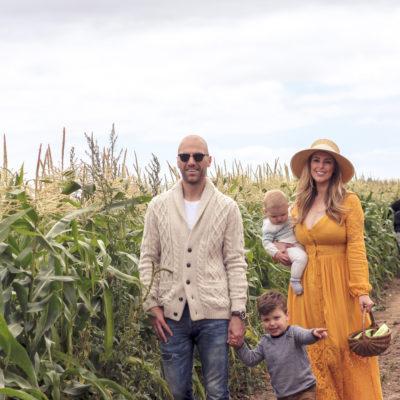 Autumn Corn Picking