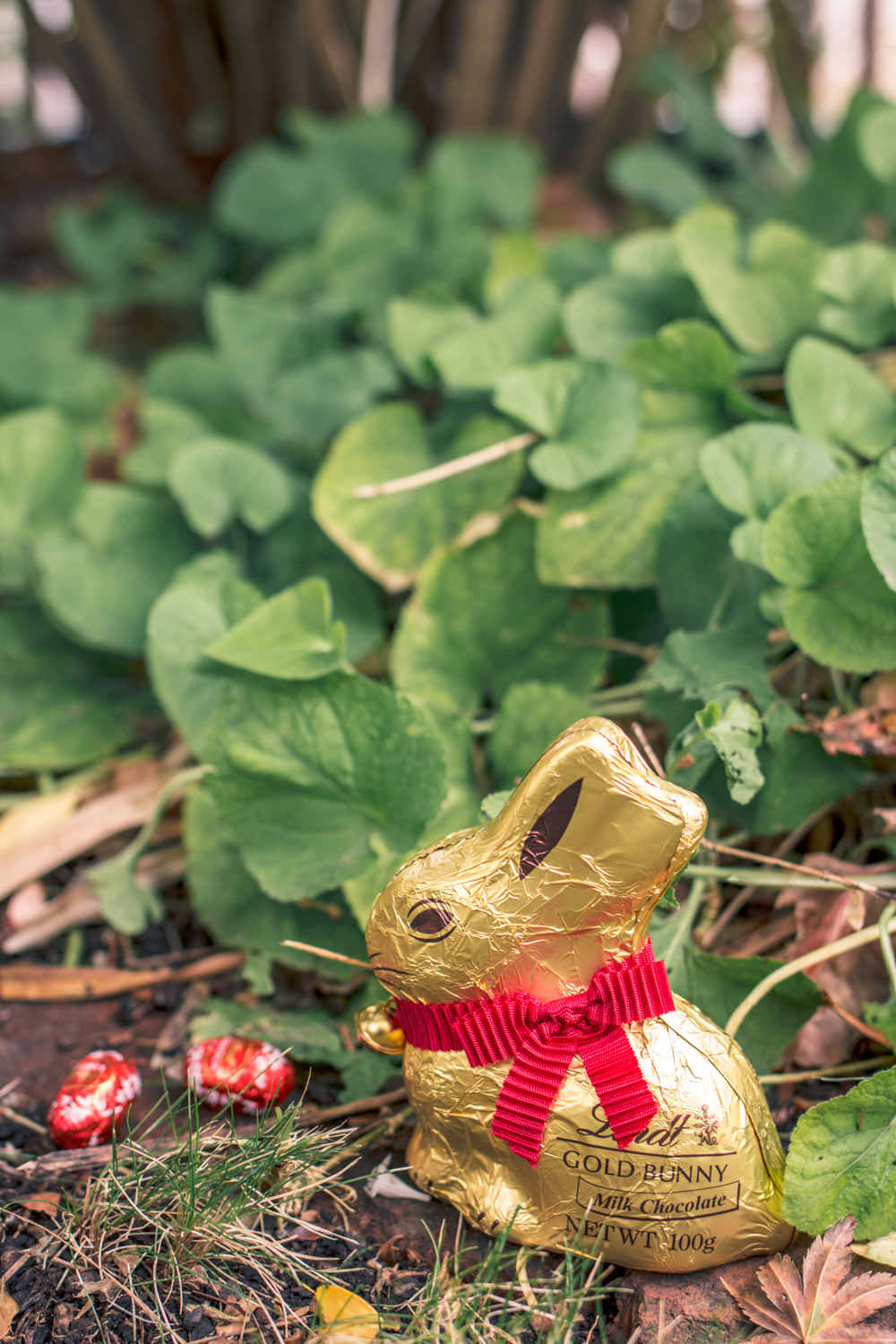 Lindt chocolates at GoldfieldGirl Autumn Easter Egg Hunt