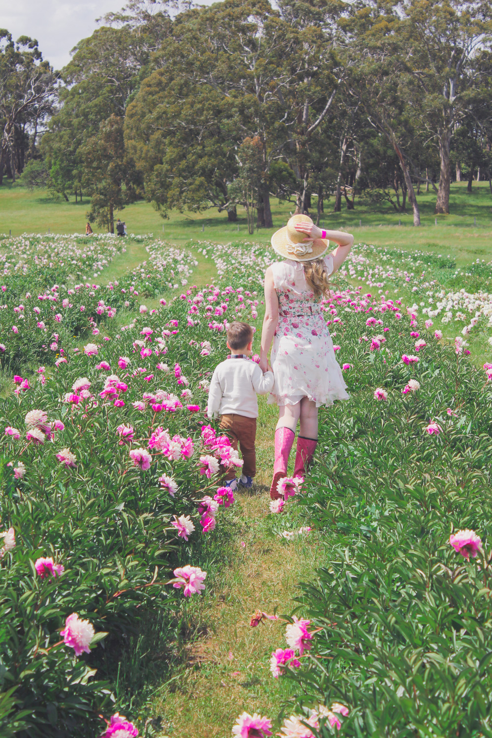 Goldfields Girl standing in the Peony Paddock at Spring Hill Peony Farm wearing an Alannah Hill dress and straw hat