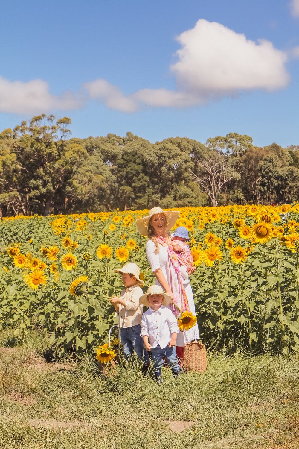 Goldfields Girl with her kids in the sunflower field near Ballarat holding giant sunflowers and wearing straw hats