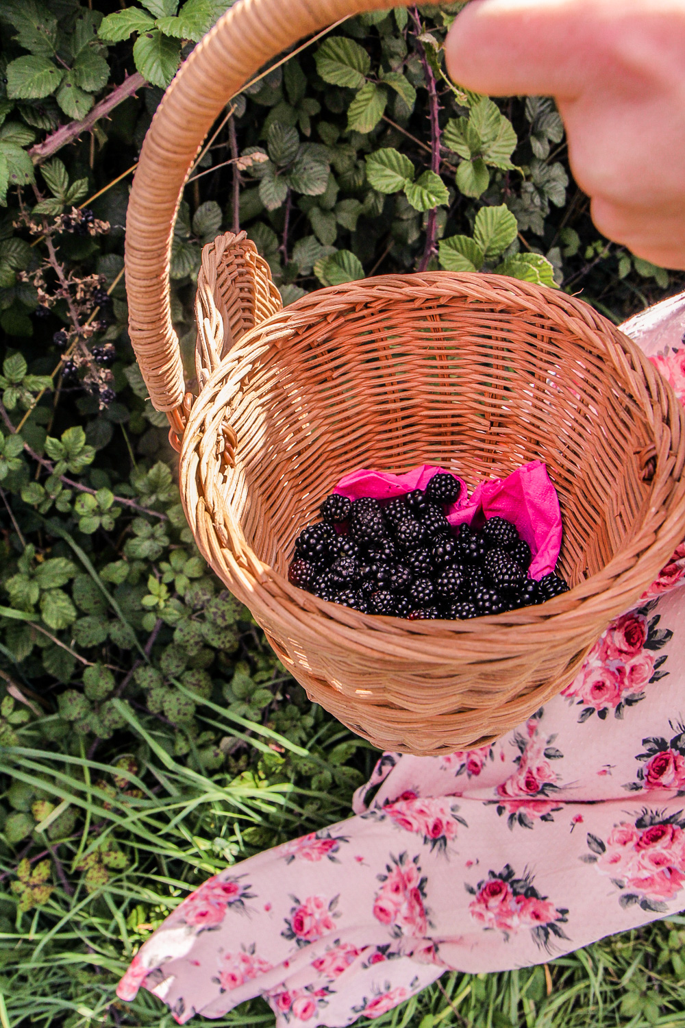 blackberries in a small basket
